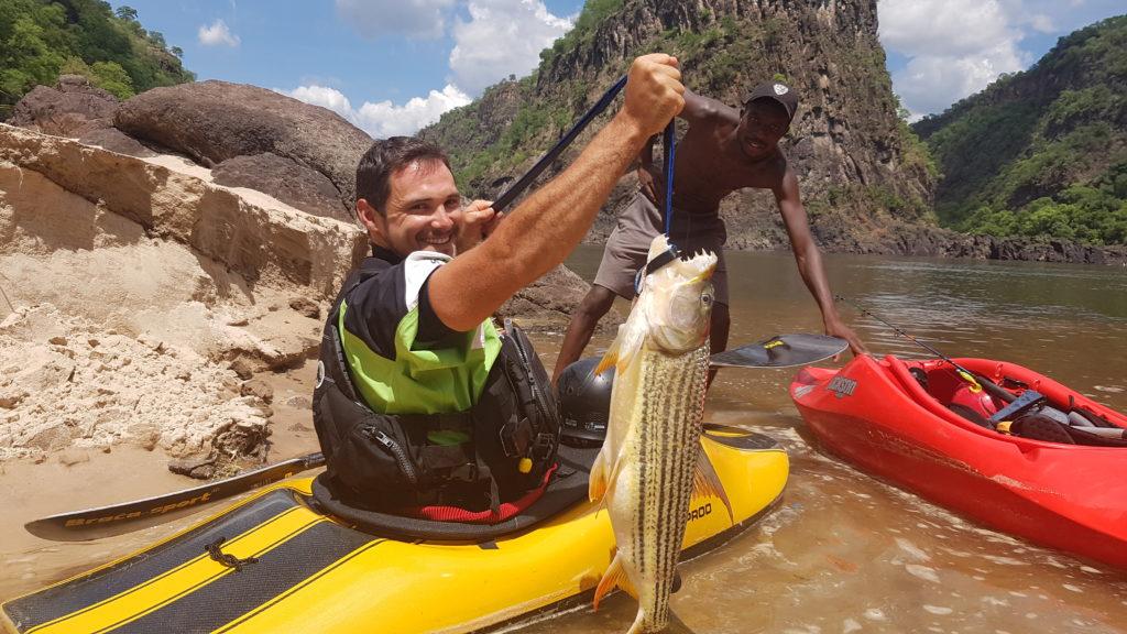 Un kayakiste tient un Tiger Fish. Adrénaline garantie pendant le combat.